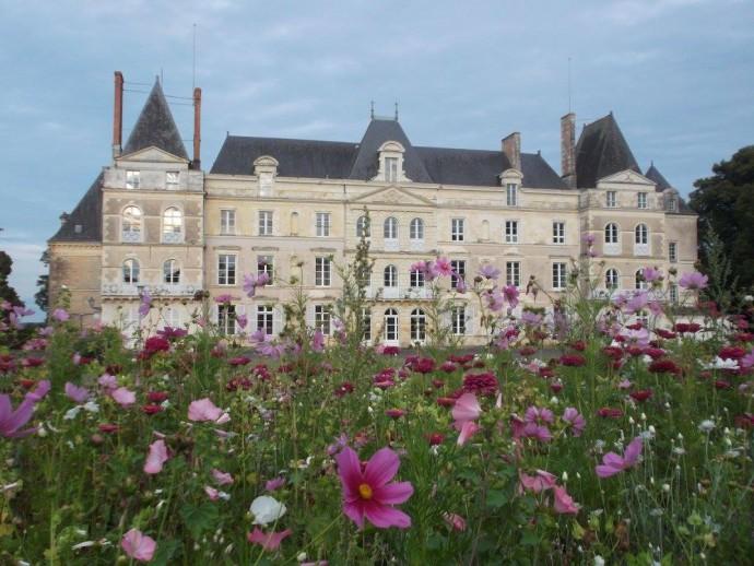 Chateau de Briançon (Bauné)